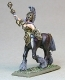 Dark Temple Centaur Sword Officer