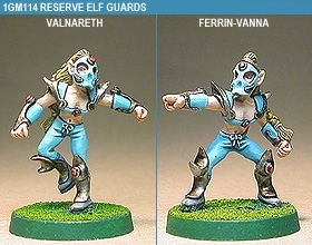 Gridiron Reserve Elf Guards